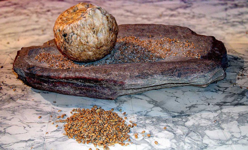 Molino neolítico de vaivén (Wikipedia) En inicio del pan